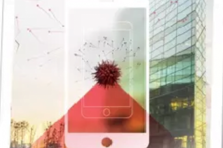 Hundra procent av 850 globala organisationer har utsatts för mobilattacker