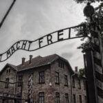 Lögnspridare på nätet bidrar till okunnighet om Förintelsen