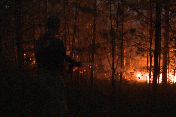 Gräs- och skogsbränder rasar i Sverige
