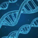 Ny lagringsbaserad teknik revolutionerar medicinsk forskning